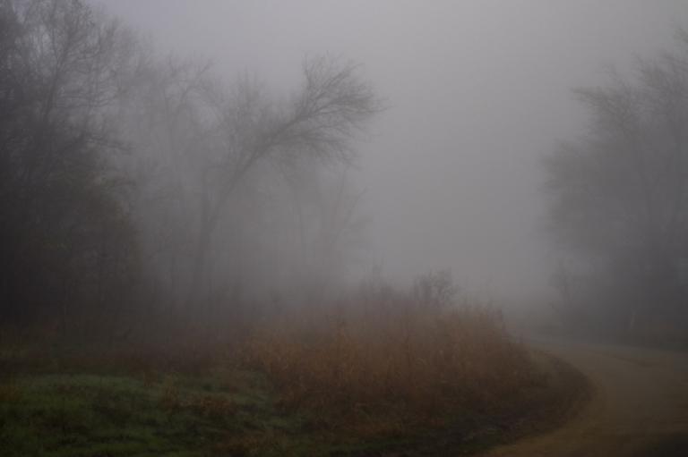 rural_fog-1