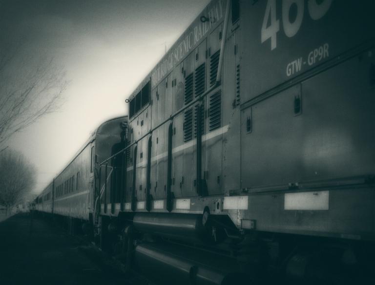 roachography_blue_train